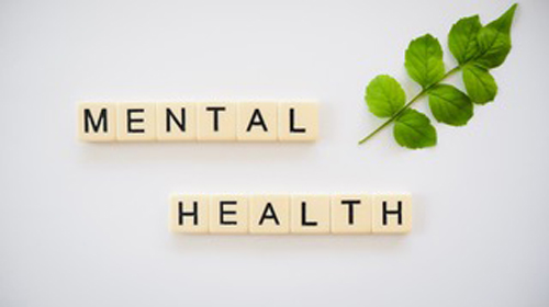 mental-health-course-featured